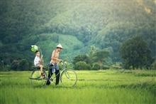 """中国农村的教育问题真要靠 """"增加营养"""" 和 """"让妈妈回家"""" 来解决吗?"""